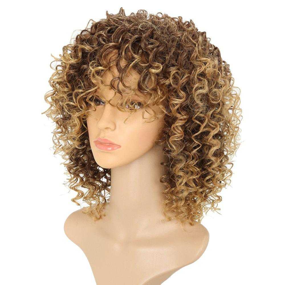 Women Silver Gray Afro Curly Style Short Hair Synthetic Wig for Party 5 Colors - LIGHT BROWN