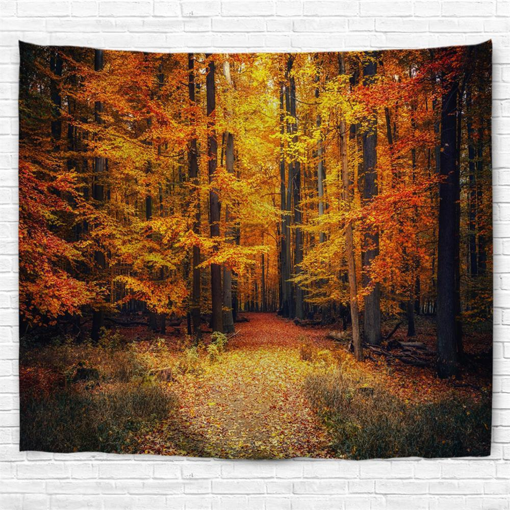 Autumn Park 3D Printing Home Wall Hanging Tapestry for Decoration - multicolor W200CMXL180CM