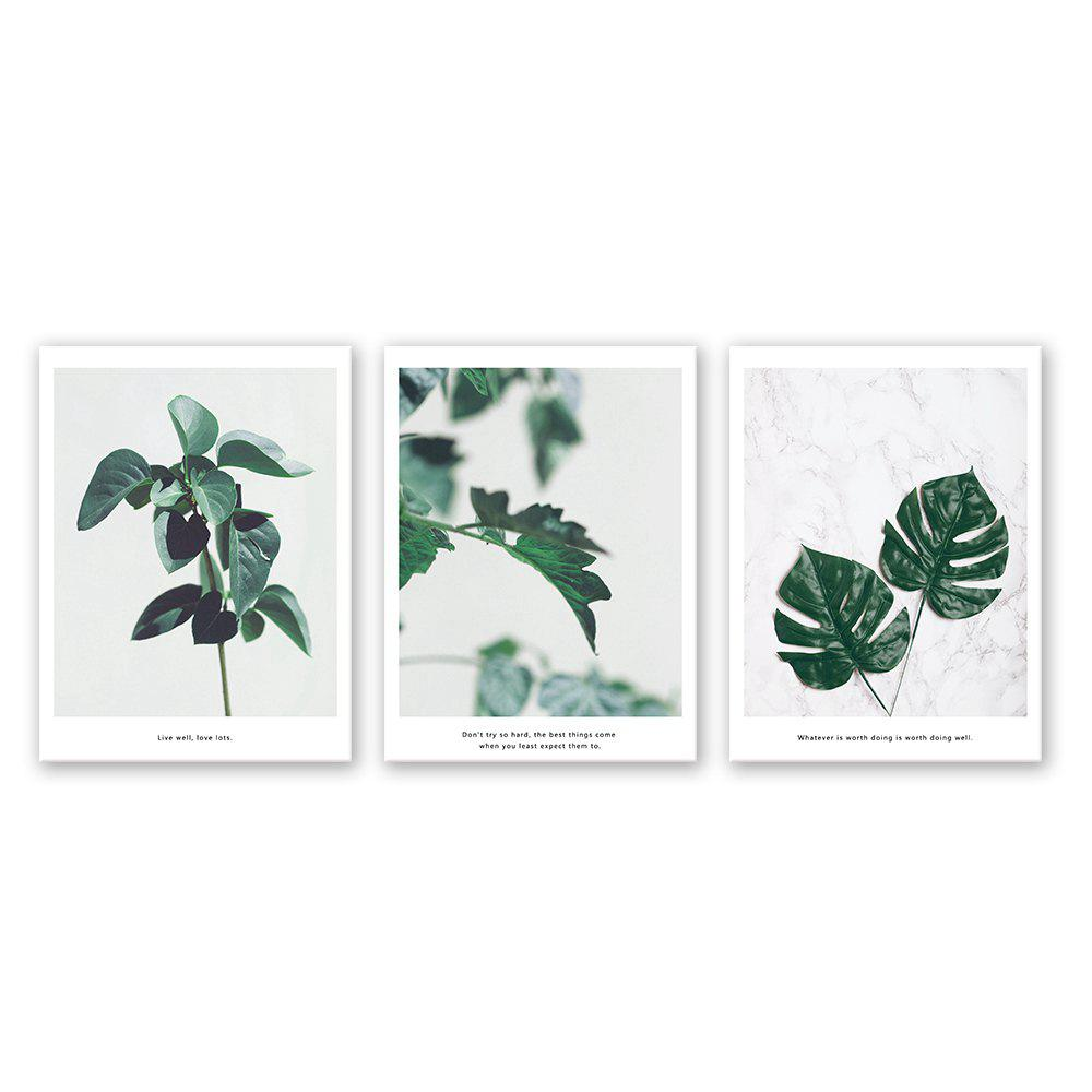 3PCS W428 Leaf Unframed Canvas Print for Home Decoration - multicolor 45CM X 60CM X 3PCS