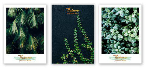 3PCS W442 Plant Letter Unframed Wall Canvas Print for Home Decoration - multicolor 30CM X 42CM X 3PCS