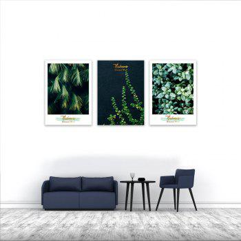 3PCS W442 Plant Letter Unframed Wall Canvas Print for Home Decoration - multicolor 40CM X 56CM X 3PCS
