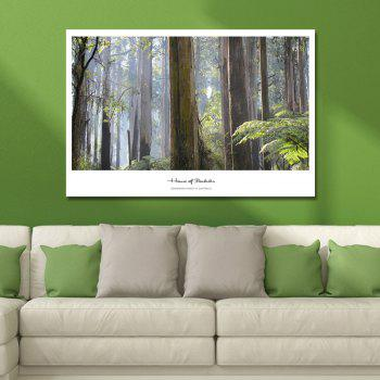 Photography Mountain Forest Print Art - multicolor
