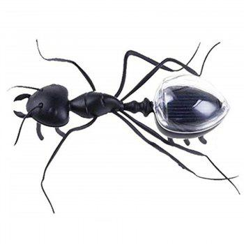 Solar Powered Insect Learn Educational Toy for Children - BLACK