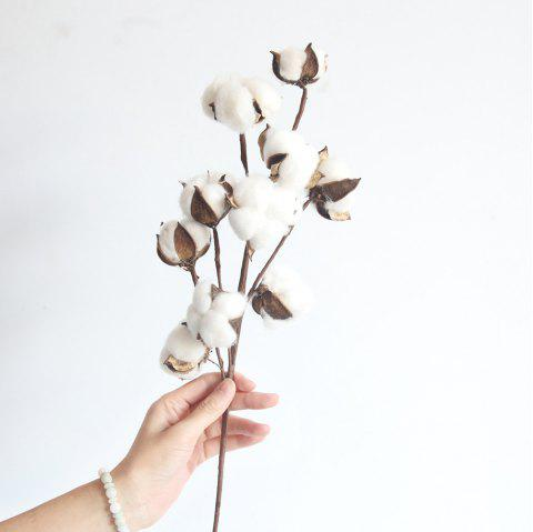 Dried Cotton Stems Farmhouse Style Artificial Flower Filler - WHITE