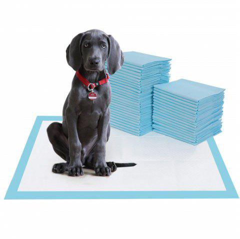 40pcs Pet Training and Puppy Pee Pad for Dogs  Super Absorbent and Leak-Free - DAY SKY BLUE
