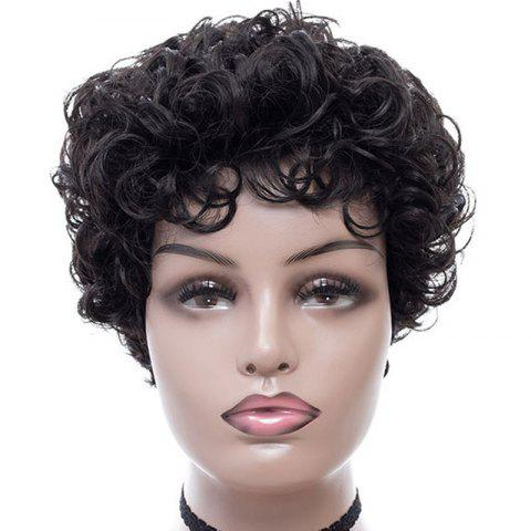 Fashionable Elegant Small Curl Short Wig - BLACK 8INCH