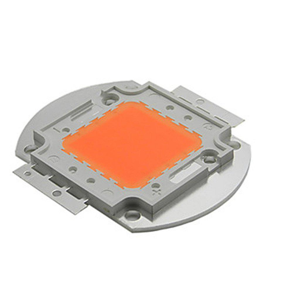 YWXLight 50W High Power LED Chips for Plant Growing Light Lamp DC 30 - 34V - DAHLIA