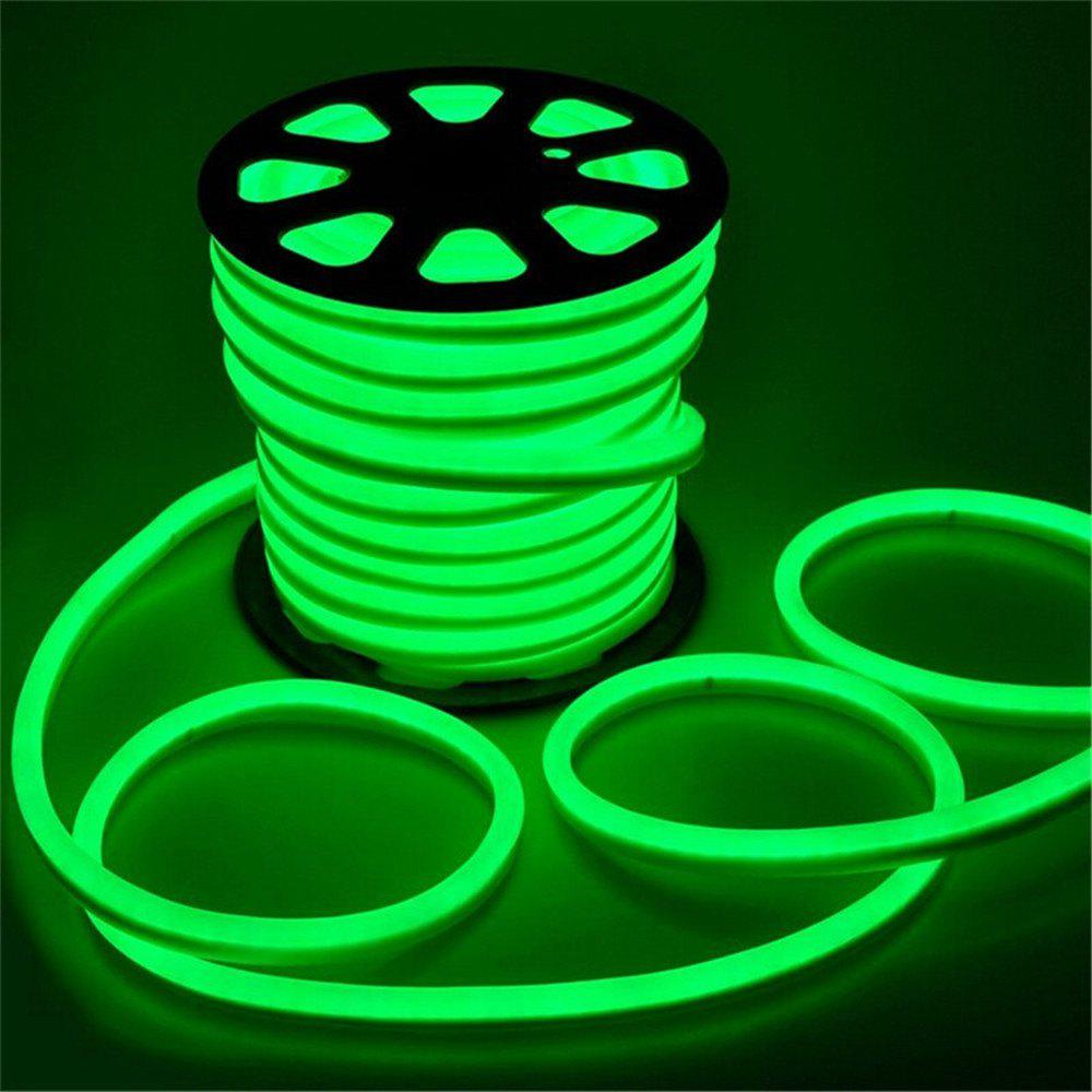 YWXLight 5M LED Strip Flexible Neon Lights Waterproof LED Light Lamp AC 220 - 240V - GREEN EU PLUG